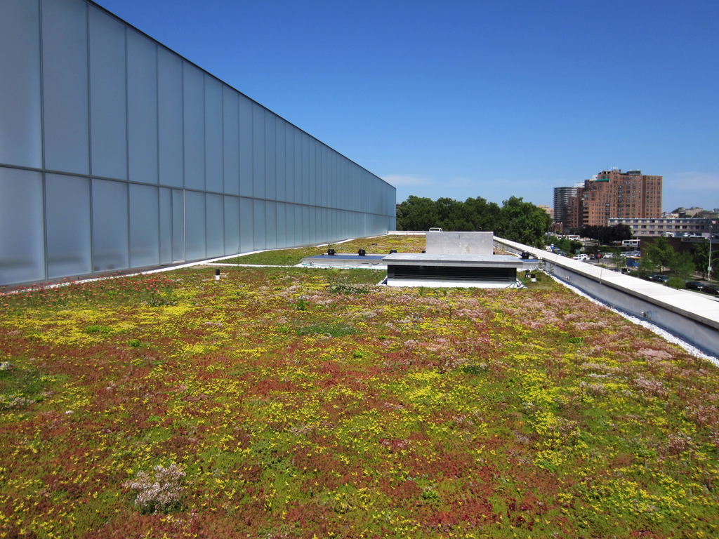 Green Roof In Bloom (plants Provided By Sempergreen And Emory Knoll Farm)