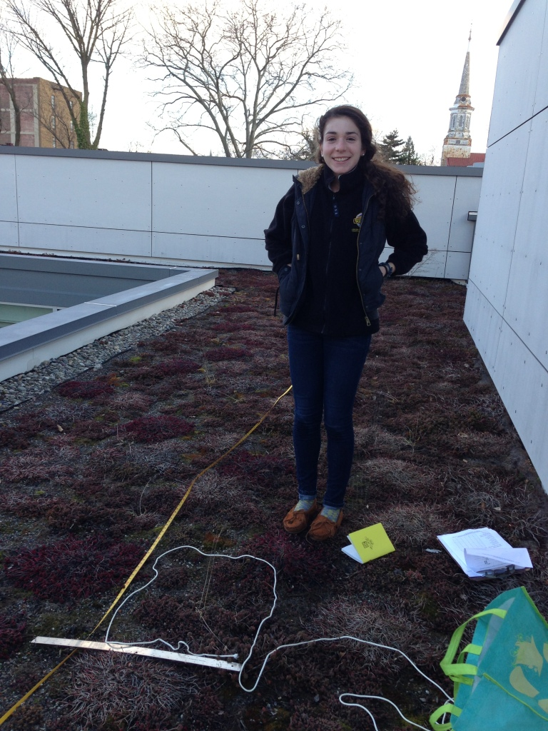 Roofmeadow intern, Alison Love, preparing to get to work on the GFS green roof.