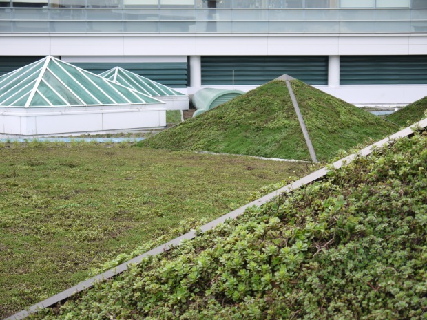 Green roof pyramids echo the shape of the skylights.