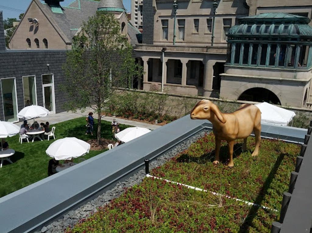 A fiber glass goat named Frejya on the America Swedish Institute green roof.