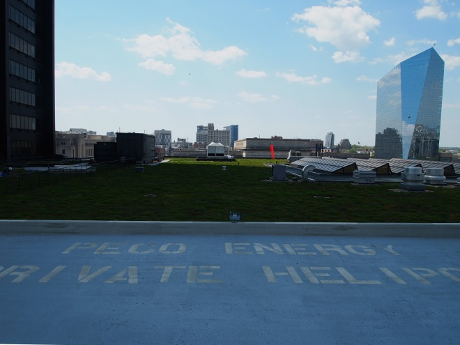 This green roof includes a helipad!