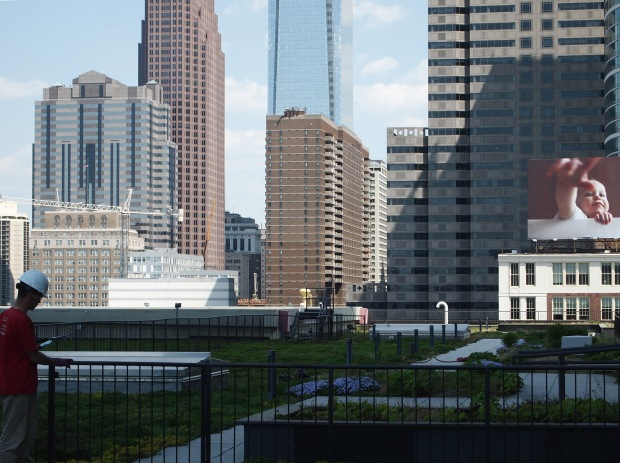 Many Center City buildings have a view of the PECO green roof.