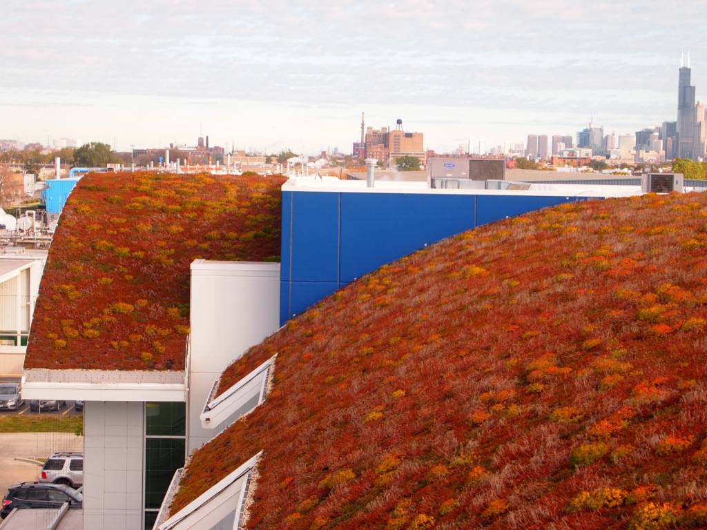 Looking north over the barrel roof, the skyline of Chicago is visible in the background.